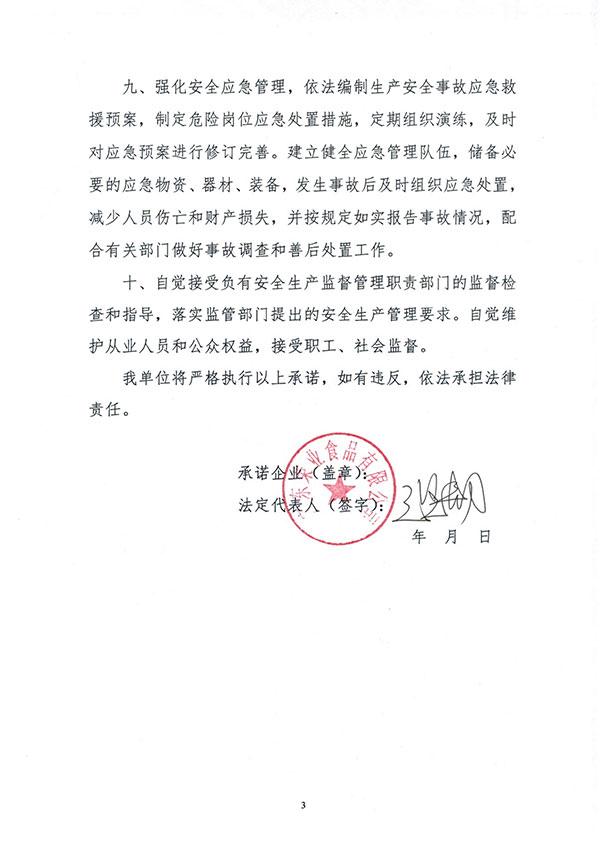 安全生产主体责任承诺书-3